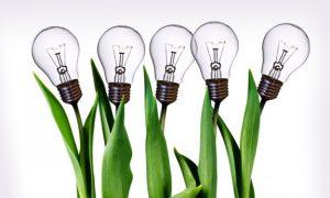 تحقق اقتصاد دانش بنیان