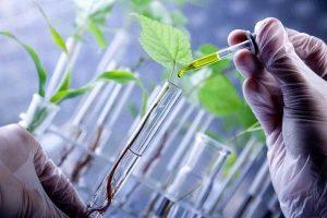 صندوق حمایت از سرمایه گذاری زیست فناوری