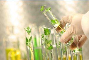 تجاری سازی علم و فناوری