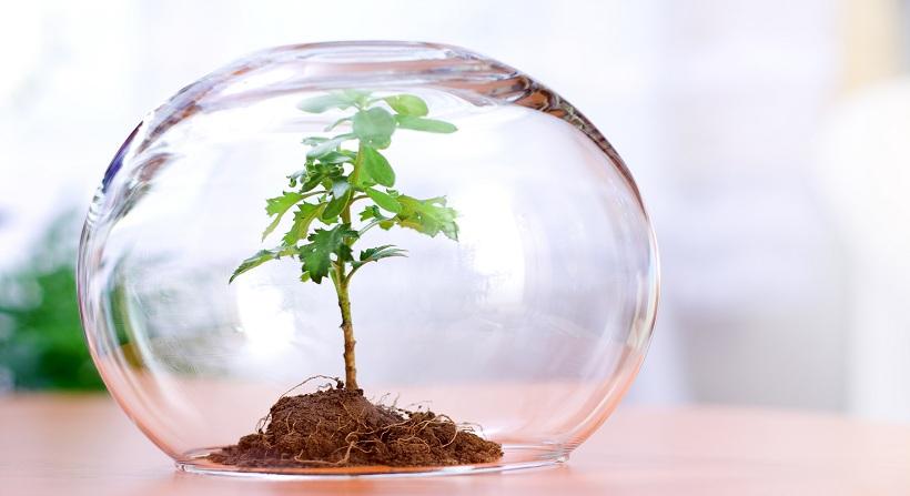 سودآوری بالای شرکت های دانش بنیان حوزه زیست فناوری