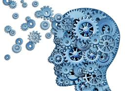شناسایی نیازهای زیر ساختی شرکت های دانش بنیان